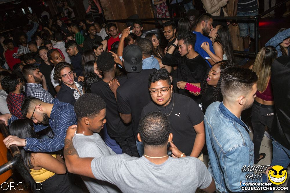 Orchid nightclub photo 74 - September 21st, 2019