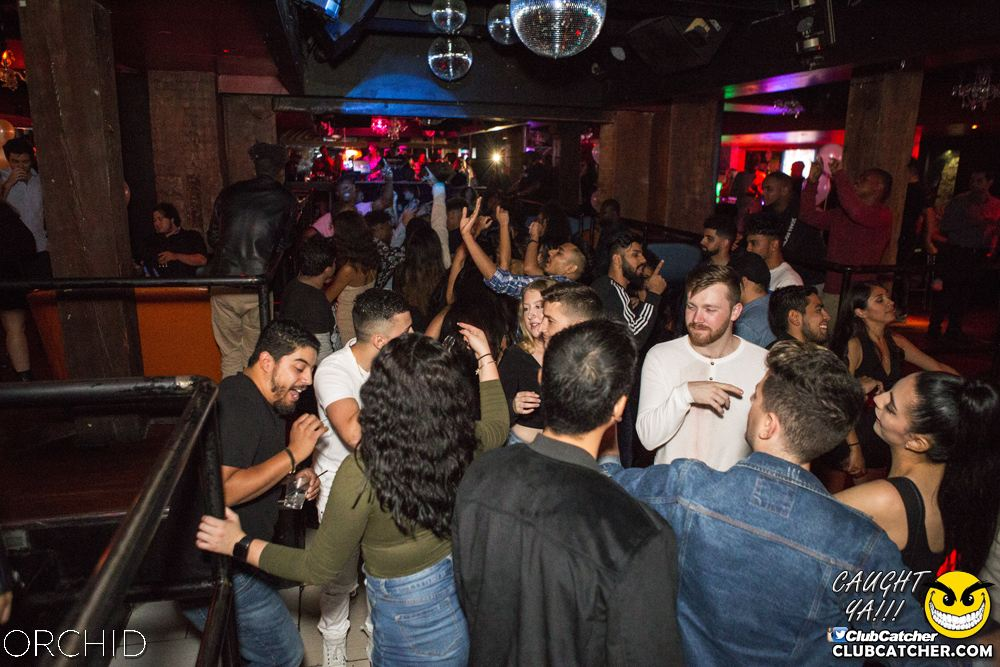 Orchid nightclub photo 118 - September 28th, 2019