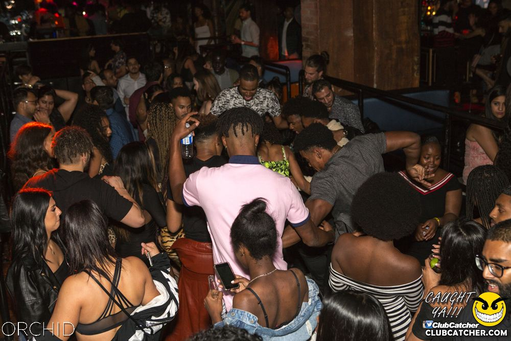 Orchid nightclub photo 129 - September 28th, 2019