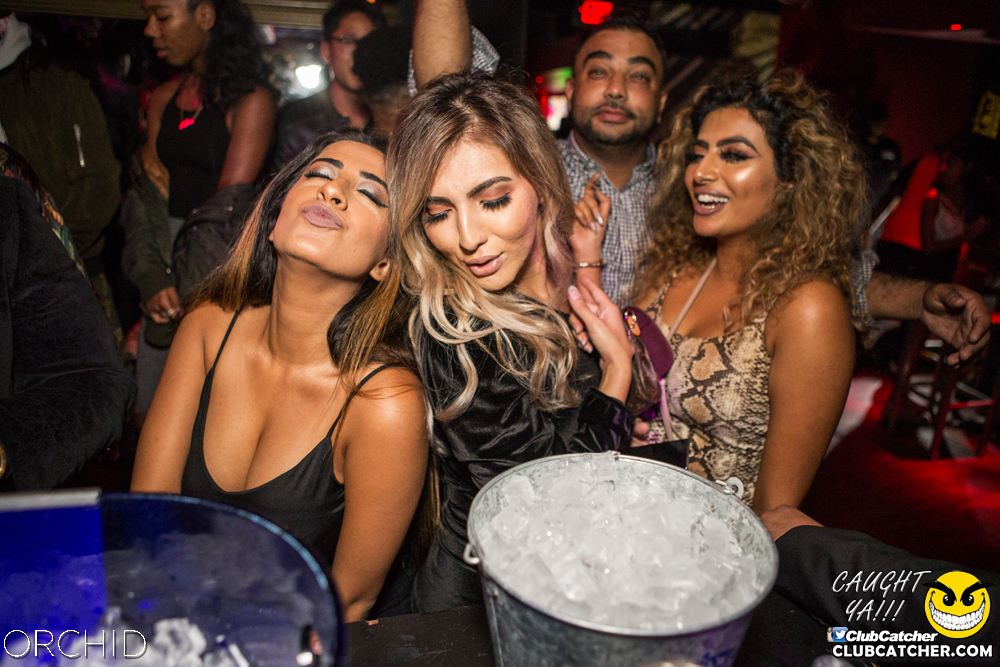 Orchid nightclub photo 20 - September 28th, 2019