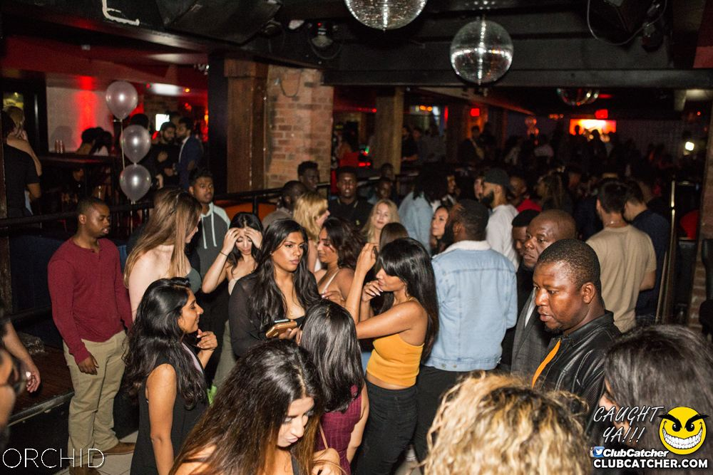 Orchid nightclub photo 47 - September 28th, 2019