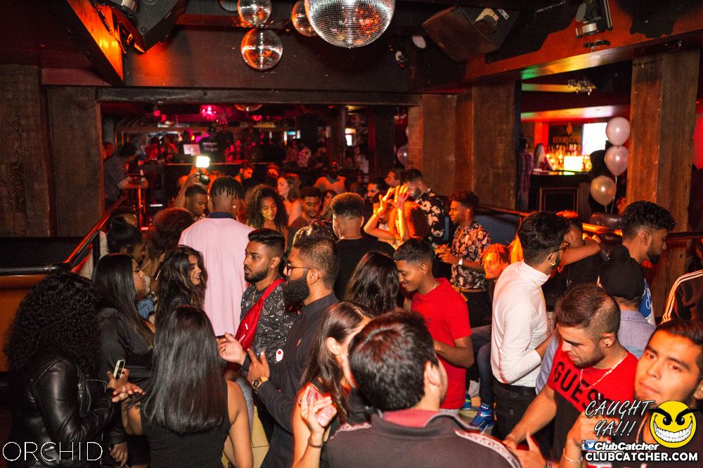 Orchid nightclub photo 99 - September 28th, 2019