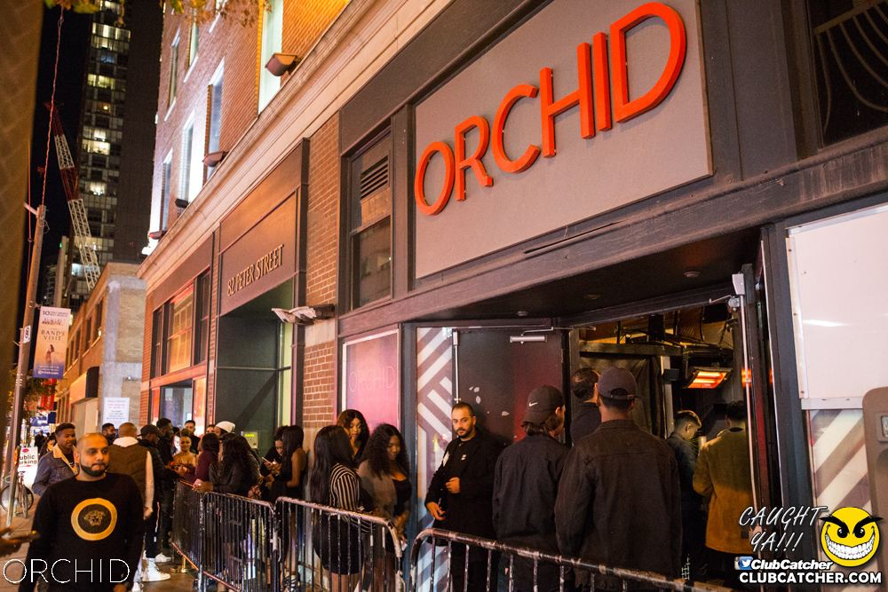 Orchid nightclub photo 21 - October 5th, 2019