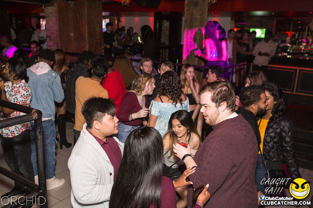 Orchid nightclub photo 35 - October 5th, 2019
