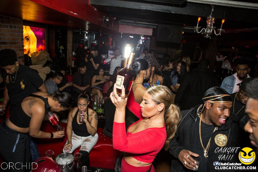 Orchid nightclub photo 58 - October 5th, 2019