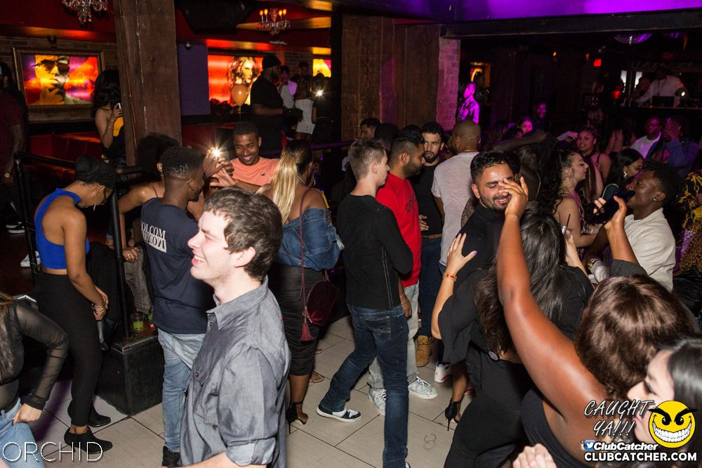 Orchid nightclub photo 67 - October 5th, 2019