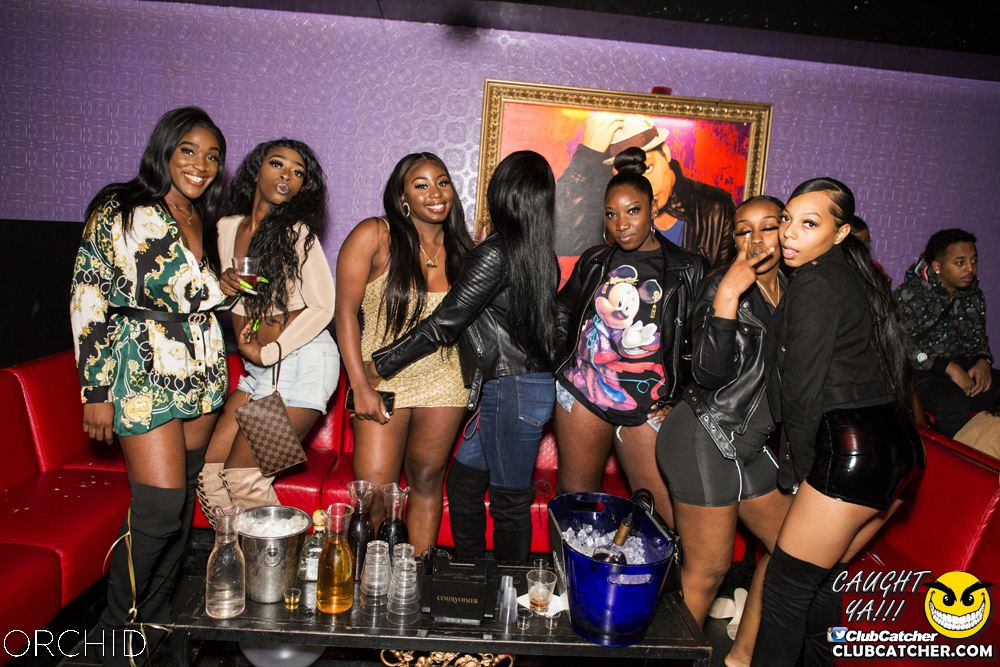 Orchid nightclub photo 96 - October 5th, 2019